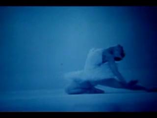 """(мгндня) Майя Плесецкая, """"Умирающий лебедь"""""""