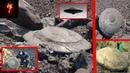 Тайная связь с внеземной цивилизацией. Зачем эти существа ищут контакт с людьми?