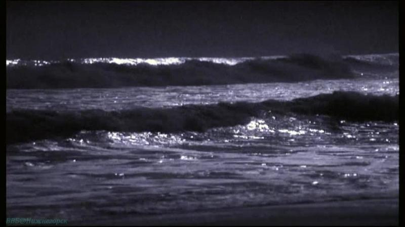 BBC «Голубая планета (1). Голубая планета» (Познавательный, природа, животные, 2001)