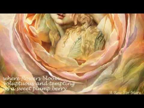 Brigitte's Rose Collection 2 by Carol Cavalaris