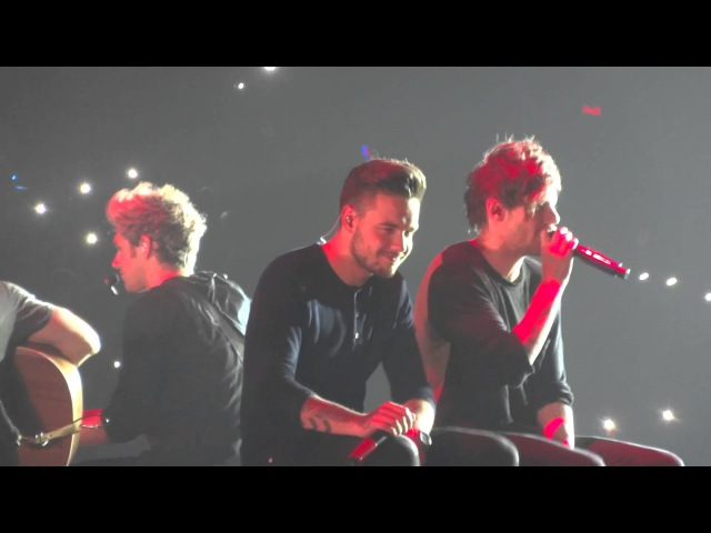 One Direction - Night Changes, Little Things, 31.10.2015, Sheffield, UK OTRA (lilo paynlinson interacting with each other)