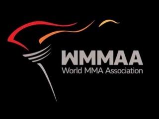 Чемпионат Европы по ММА 2016, г. Санкт Петербург, Ледовый Дворец. Основной Ринг. Прямая Трансляция.
