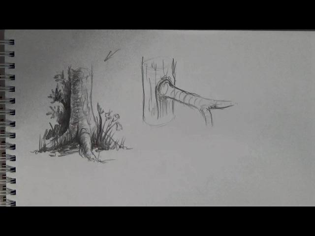 Основы рисунка Часть 18 рисуем деревья