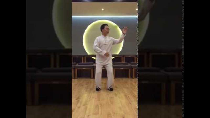 11 и 12 shi zuo gu you pan shi 10 shi - hou tui shi в исполнении Мастера Ван Лина