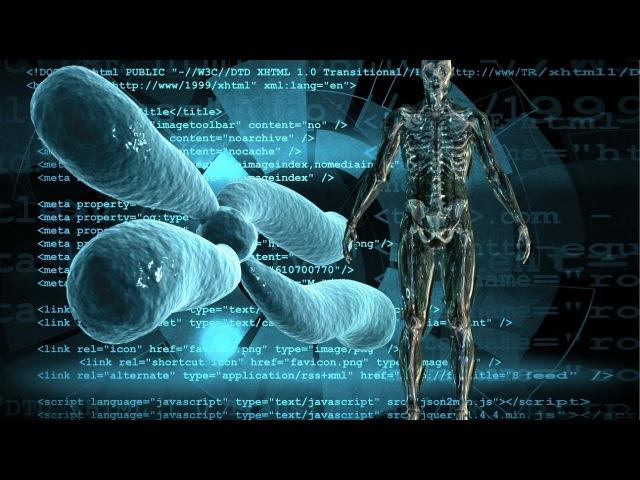Was wirklich heilt Revolutionäre Gesundheitskonzepte aus der Raumfahrtmedizin