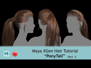 CGLYO - Realistic Ponytail HairStyle with XGen & Redshift - Part02