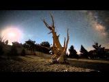 ZERO CULT - Before Sunrise (2015)