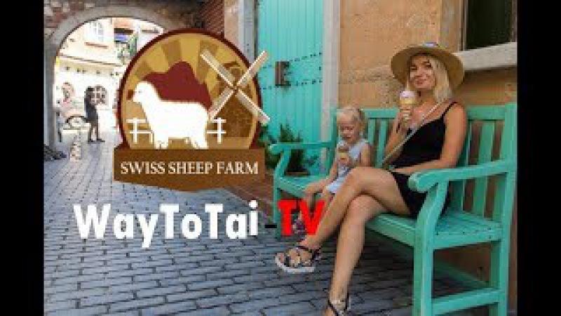 Овечья ферма в Паттайе Swiss Sheep Farm Pattaya