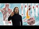 Что такое миофасциальный синдром, 🔴 триггерные точки в мышцах и миофасциальный релиз ⭐ SLAVYOGA