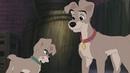 Мультфильм Леди и бродяга 2 Приключения Шалуна HD