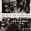 Alice In Chains [Москва, 2019]