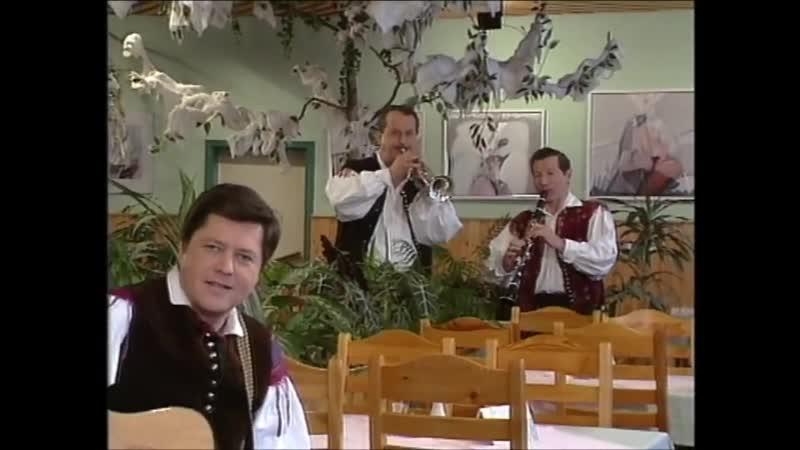 Ansambel Vilija Petriča - Tri ljubice ( Oj Rozi )