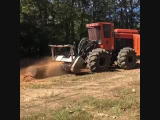 Barko 930b with a denis cimaf daf-225ex straight getting after it! 320hp of tree killer 🌳