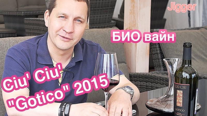 Gotico Rosso Piceno Superiore 2015 Ciu' Ciu' Дегустация био вина