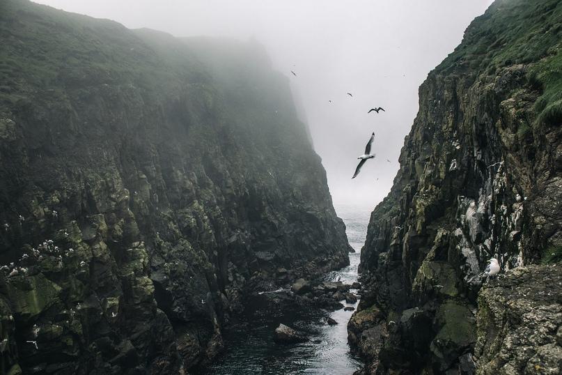 Фарерские острова, изображение №3