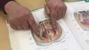 Анатомия. Мужская и Женская Промежность