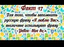 33 fakta o russkom yazyke
