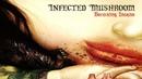 Infected Mushroom - Becoming Insane (Radio Mix)