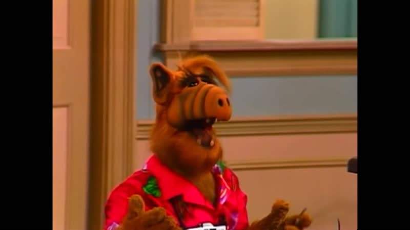 Alf Quote Season 1 Episode 26_Блендер
