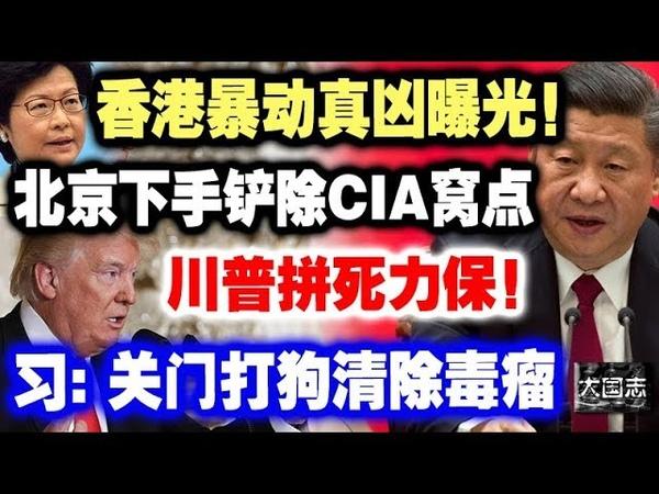 香港暴动真凶曝光!北京下手铲除CIA窝点,川普拼死力保!习:关门打狗652
