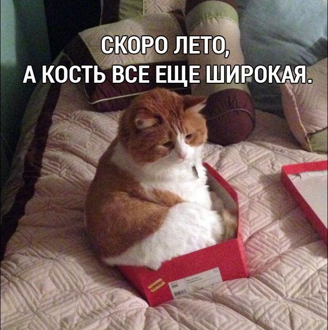 Доброго утра и хорошего дня, друзья:) Пусть выходные будут спокойными, а удача сопутствует во всех начинаниях.