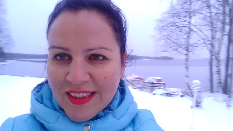 мечта идиота, дом на южном берегу финского озера