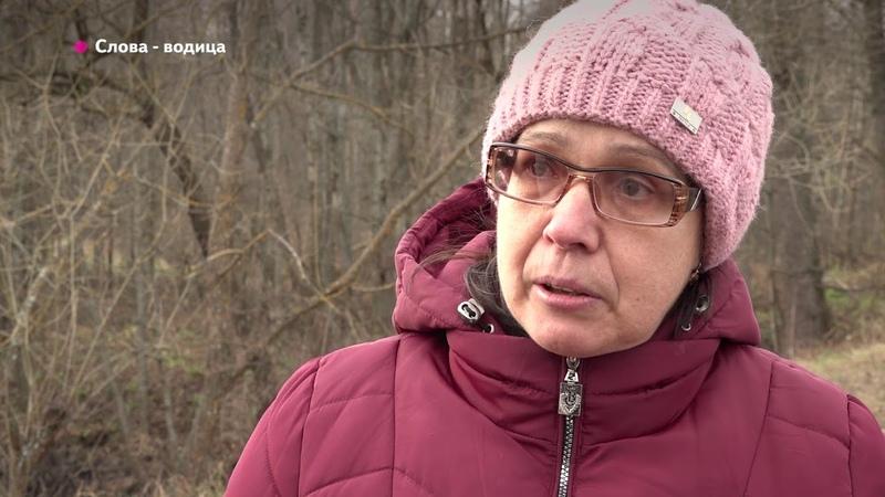 ТК Городской. В озере Близна Клинцовского района погибает рыба