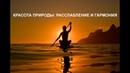 КРАСОТА ПРИРОДЫ релакс медитация расслабление гармония Дзен Nature Zen Relax