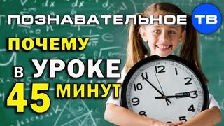 Почему в уроке 45 минут (Познавательное ТВ, Артём Войтенков)