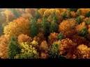 Beautiful Relaxing Music Sunny Days by Peder B Helland Official Video
