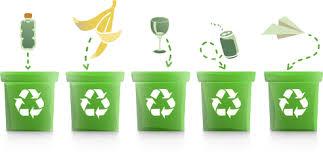 Привлечение НКО к раздельному сбору отходов, изображение №1