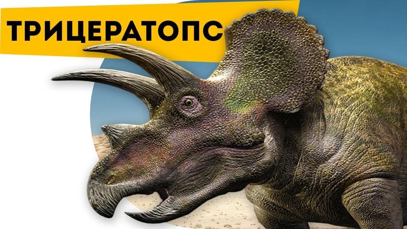 Интересно про динозавров   Трицератопс   Познавательный канал   Динозавры для детей