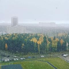 "Евгений Яровой on Instagram: ""Снег, снежок..."""