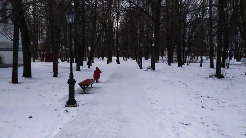 Новогодняя прогулка/New Year's walk