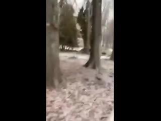 Мэр Липецка материт подчиненных