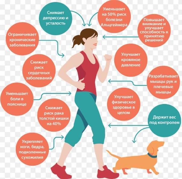 Похудение за счет ходьбы
