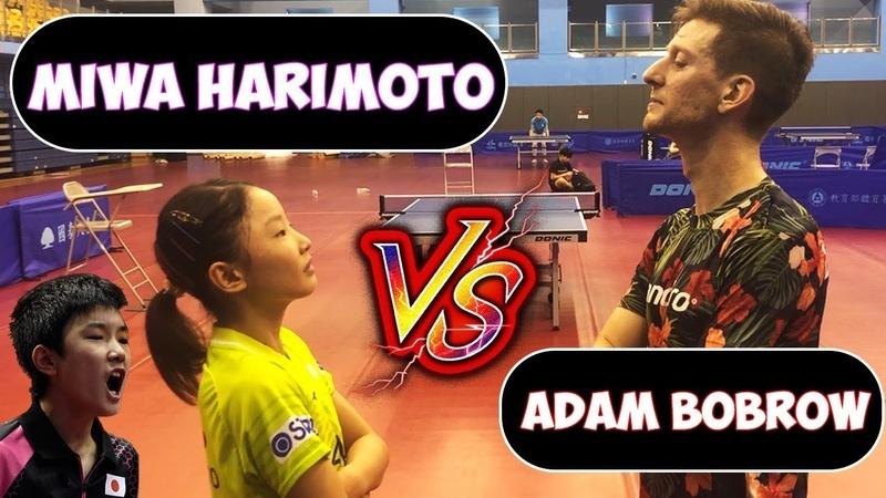 Adam vs Miwa Harimoto