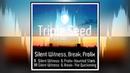 Break Silent Witness - The Quickening Triple Seed - Drum Bass