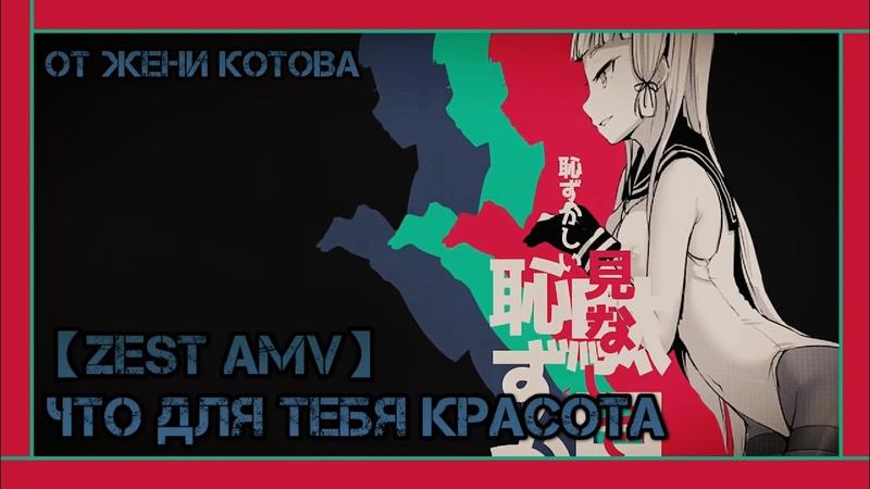 【ZEST AMV】- Что для тебя красота