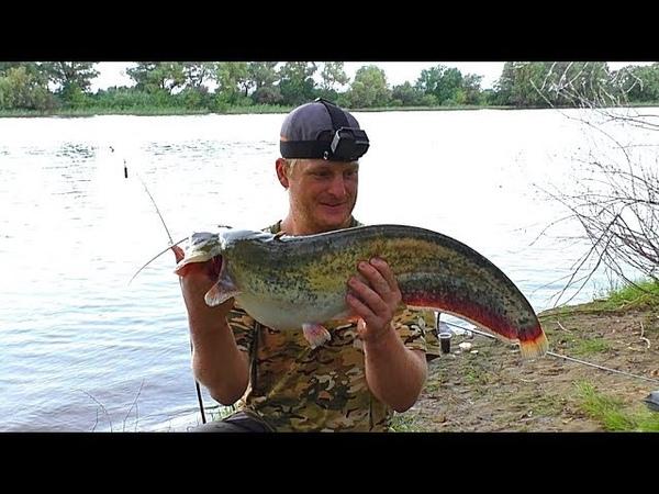Рыбалка с ночёвкой в грозу Ловля сома на червя Разведка на сазана Макушатник Донка фидер