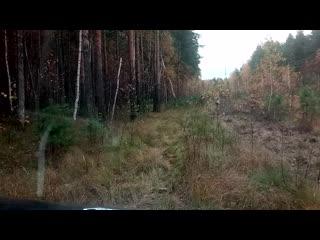 видео 001