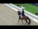 Winning Freestyle CDI Hagen Daphne van Peperstraten - Greenpoints Cupido