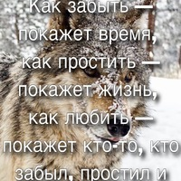 Коля Кошелев