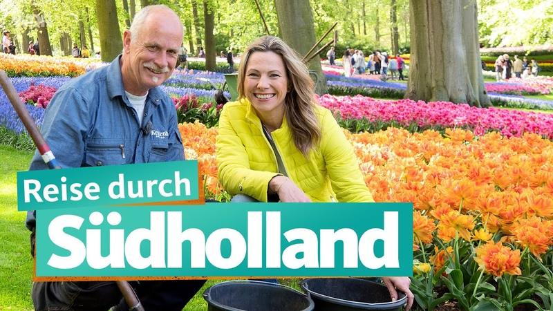 Südholland – zwischen Den Haag und Haarlem | WDR Reisen
