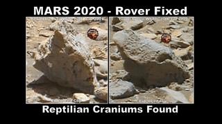 MARS 2020 - Rover Fixed - Reptilian Craniums Found - ArtAlienTV