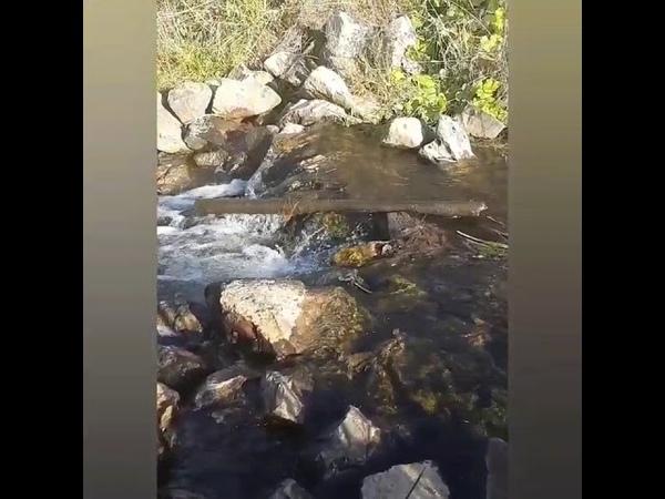 Река Большой Барлак