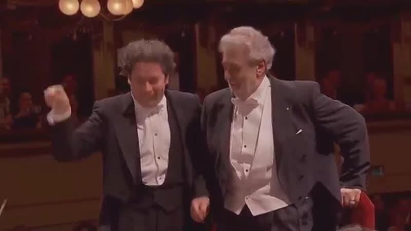 Nelieti calici La Traviata