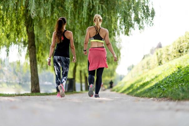 Фитнес-тренировки для похудения, изображение №2