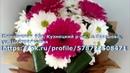 ОАЗИС в Цветочном дворе-- МОБИЛЬНАЯ УСЛУГА