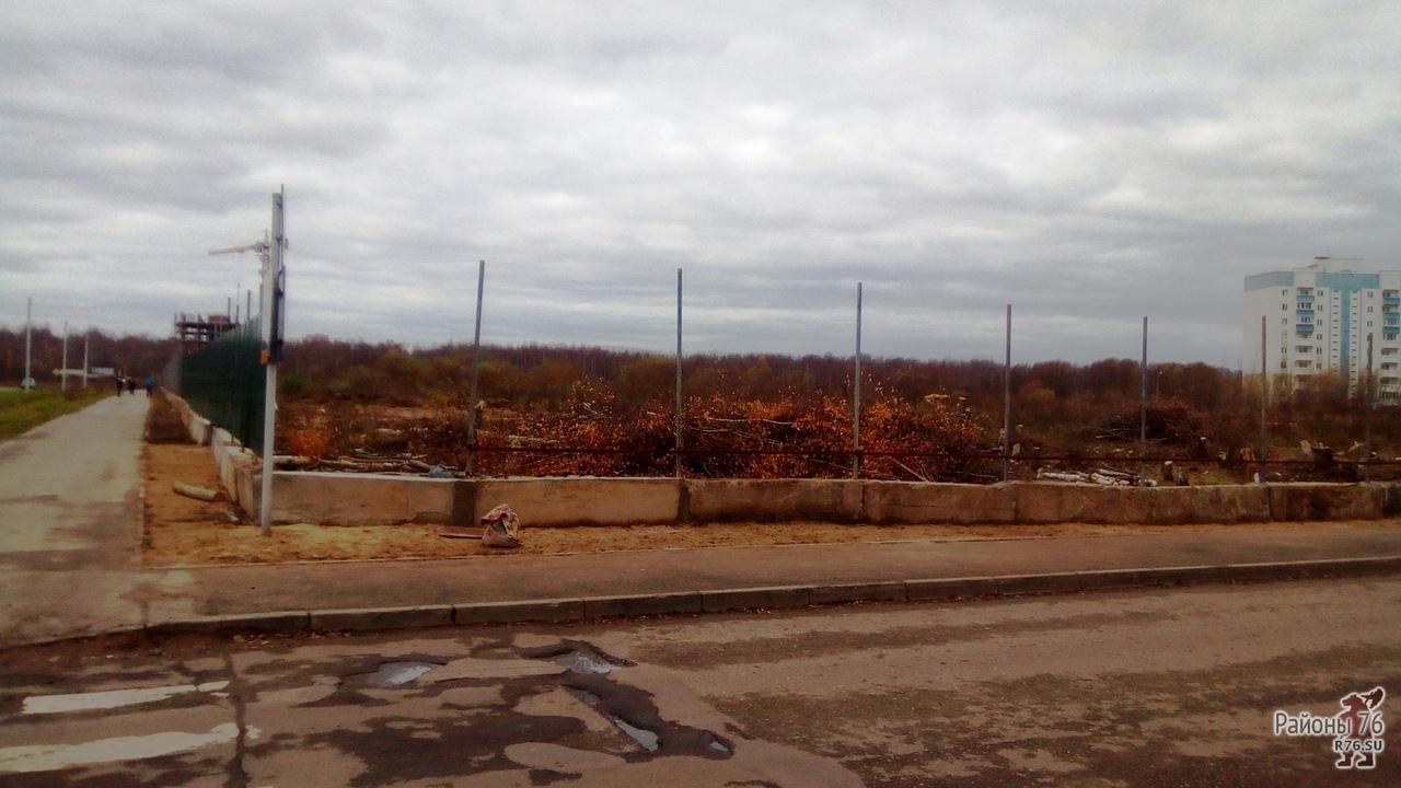 Для строительства школы в Ярославле с четвертой попытки нашли местного подрядчика